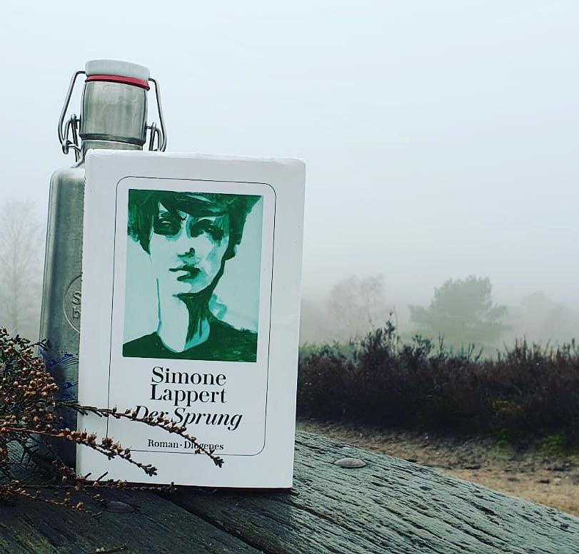 """""""Der Sprung"""" von Simone Lappert aus dem Diogenes Verlag (2019)"""