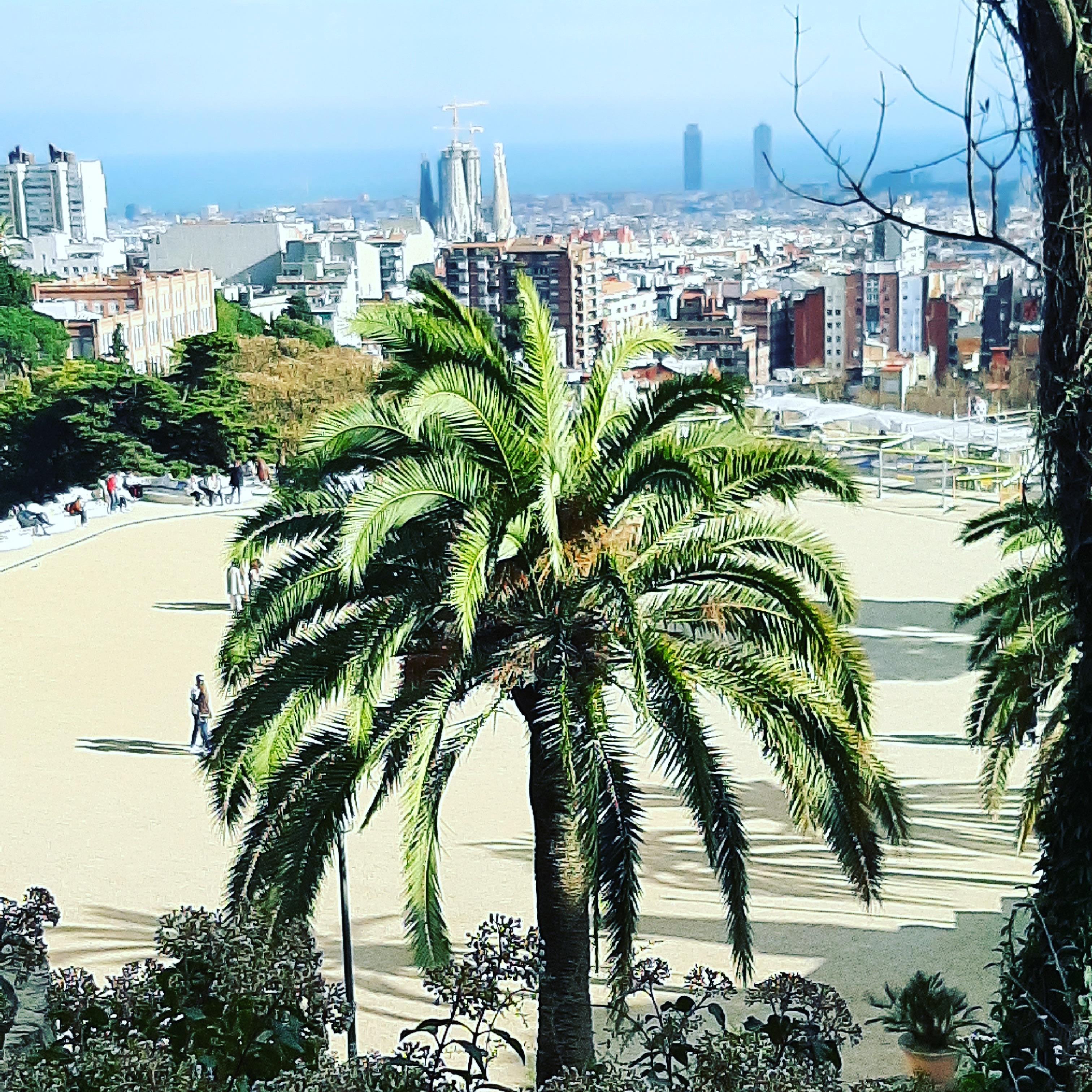 Literarische Reise Barcelona Aufgeblättert